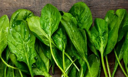 Come más espinacas