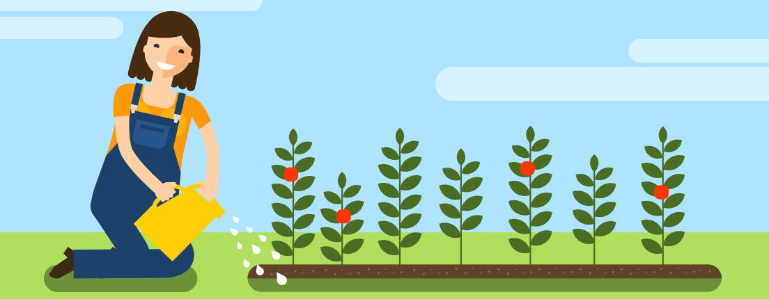 Fertilizantes para tu jardín