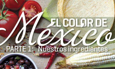 Ingredientes muy mexicanos