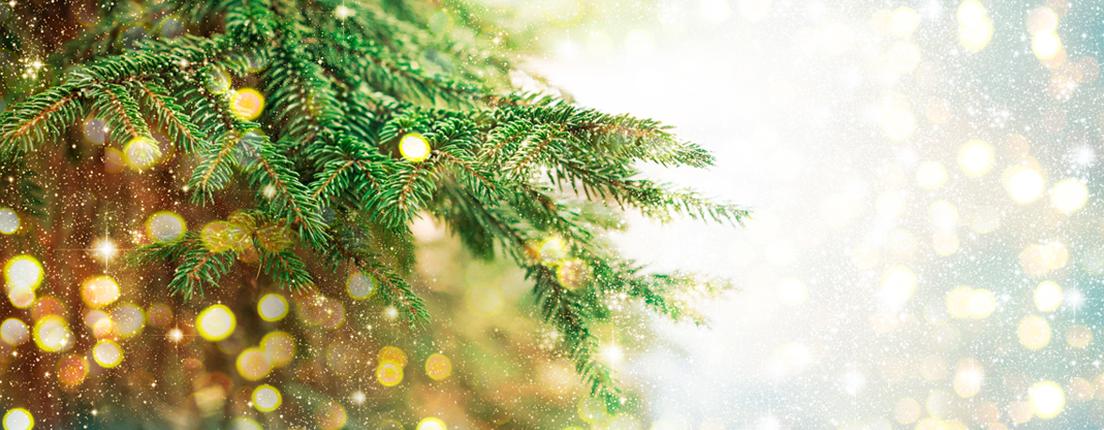 Ahorra luz en Navidad