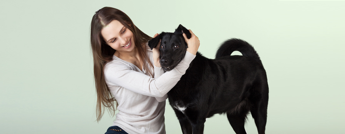 Masajes para mascotas