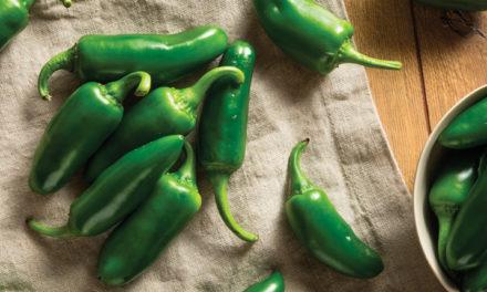 Chile Jalapeño: ¿Ya sabías esto de tu picante favorito?
