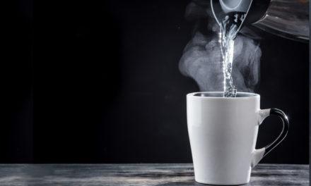 Tetera Eléctrica Salton: Agua caliente en minutos