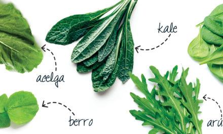 5 hojas verdes, 5 beneficios