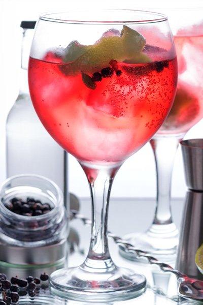 Gin & Tonic de Frutos Rojos