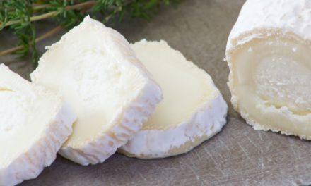 Grandes beneficios del queso de cabra