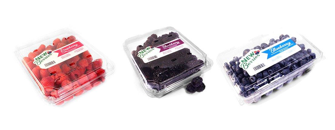 Delicia del bosque: New berries