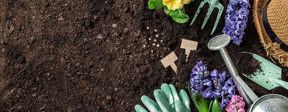 Es hora de darle vida a tu jardín