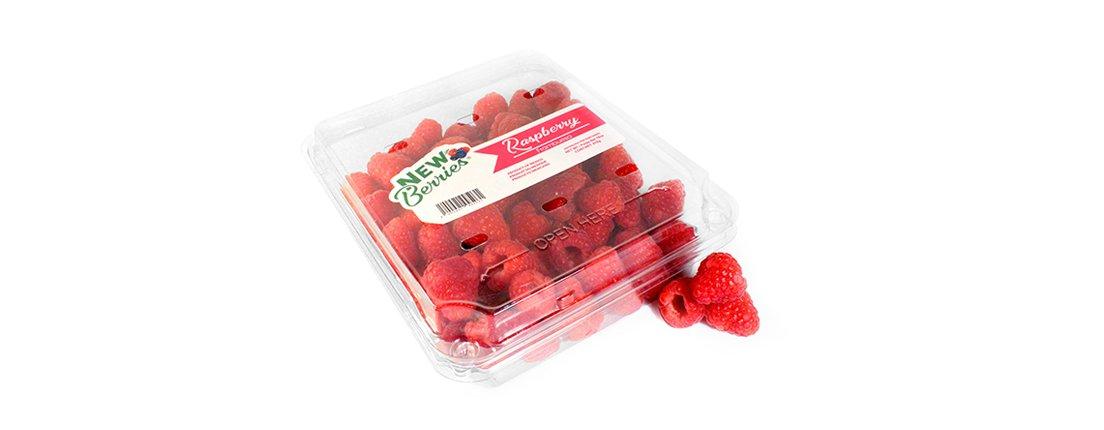 Frambuesas New Berries