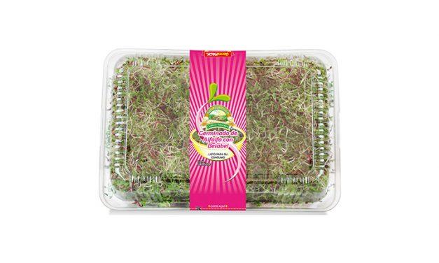 Germinado de alfalfa con betabel: Nutrición a otro nivel.