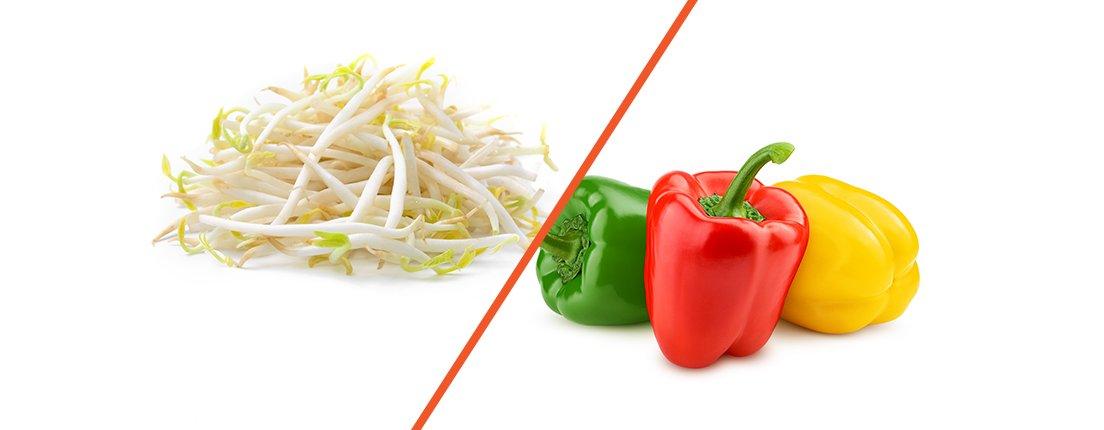 Germinado de soya (frijol Mungo) y pimientos de colores, lo que tu cuerpo necesita